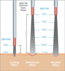 infographic_PB-1118760